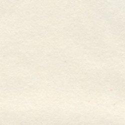 画像1: [3977] 手芸用 和紙 トレッシングペーパー(旧名称:トヨペーパー) 約97cm×66cm 1枚入